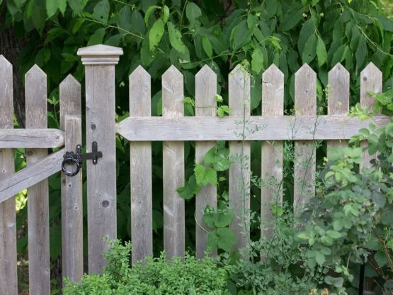Timber Picket Fence in Campbelltown